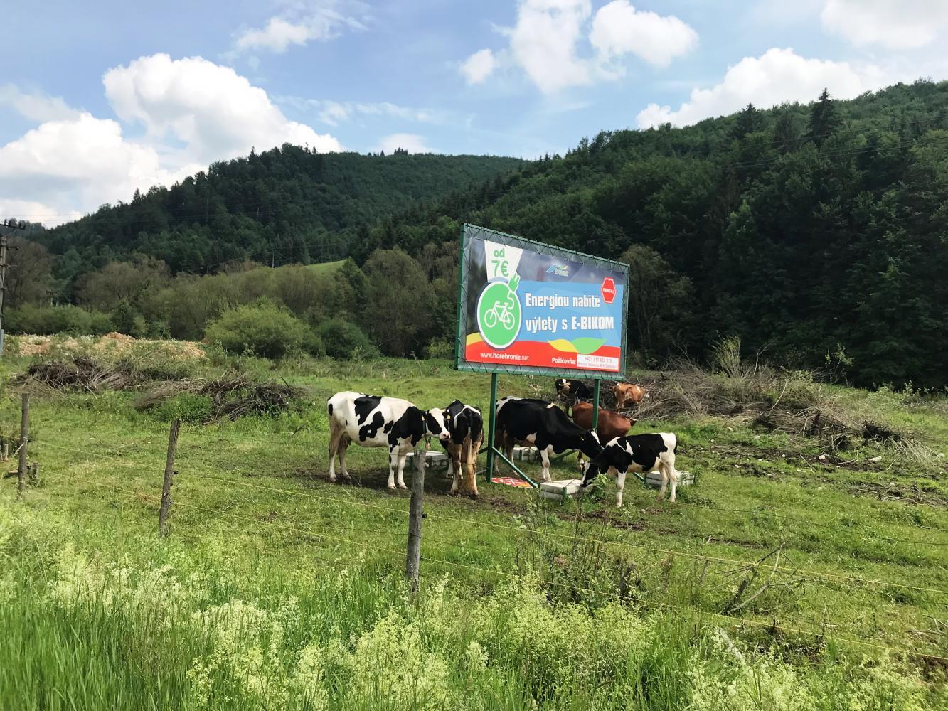 Sedlo-Certovica - South Bike Climb - PJAMM Cycling