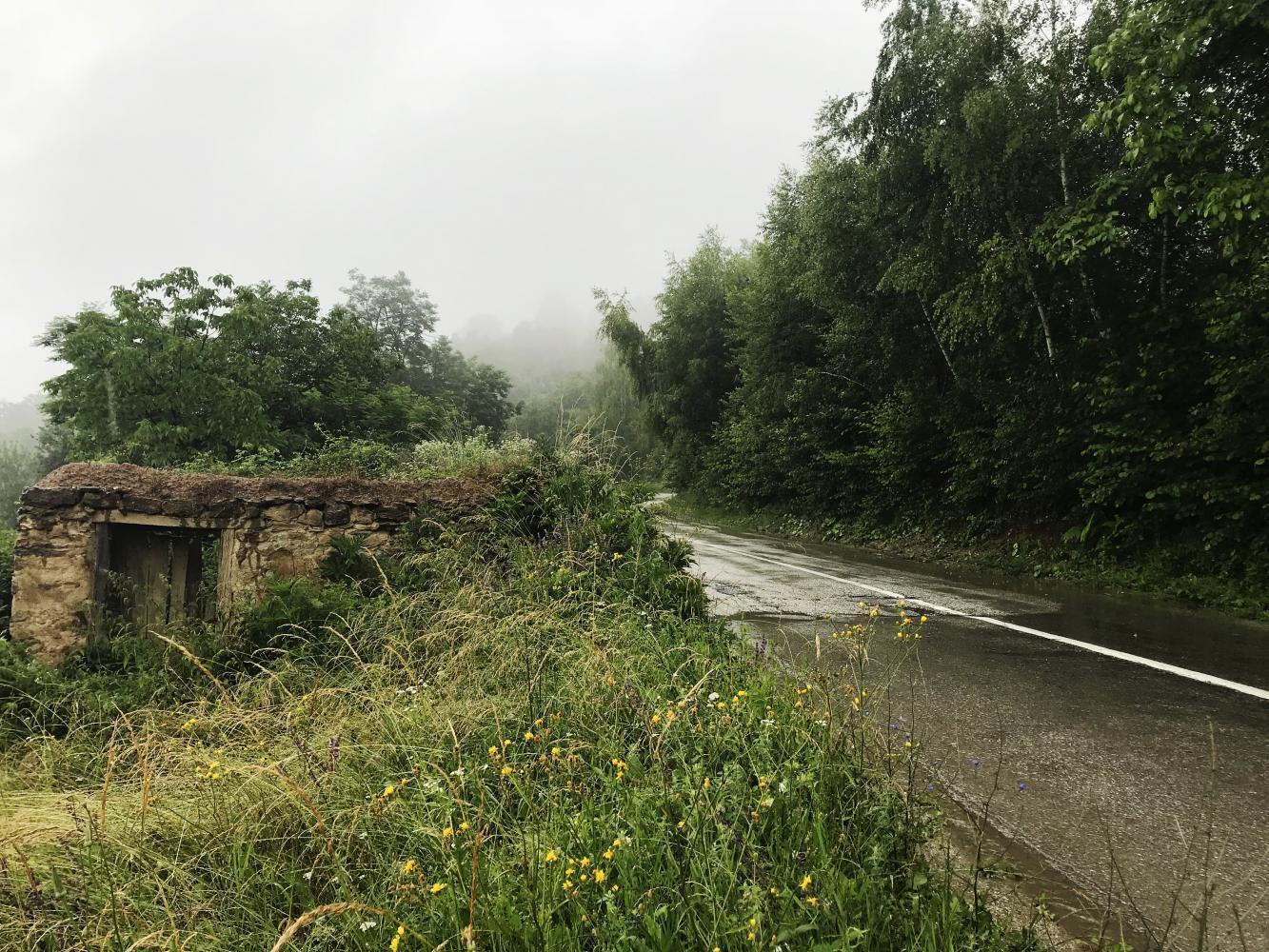 Rogacica-Vincina voda Bike Climb - PJAMM Cycling