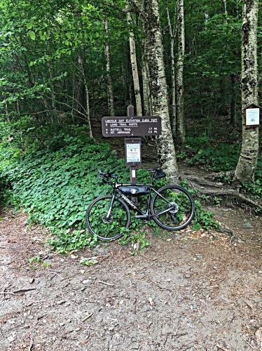 Lincoln Gap East Bike Climb - PJAMM Cycling