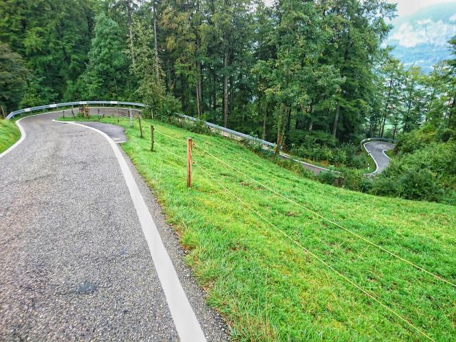 Balmberg Pashohe North Bike Climb - PJAMM Cycling