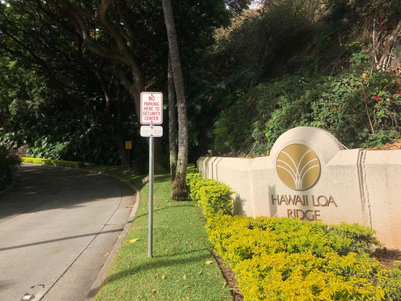 Hawaii Loa Ridge Bike Climb - PJAMM Cycling