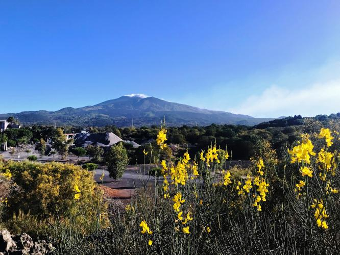 Mount Etna Bike Climb - PJAMM Cycling