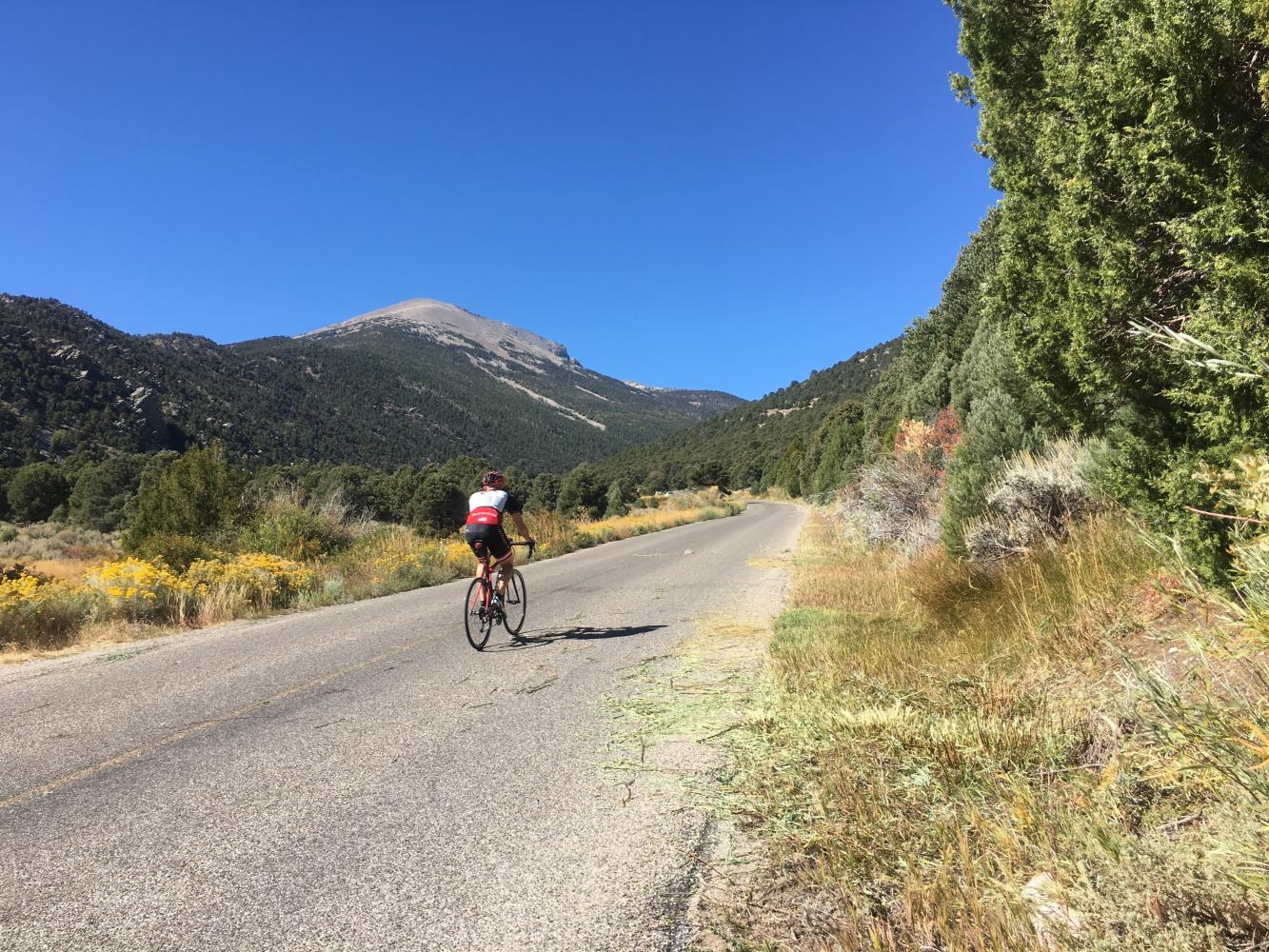Wheeler Peak Bike Climb - PJAMM Cycling