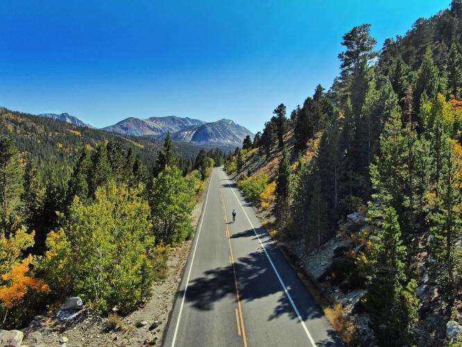 Rock  Creek Road Bike Climb - PJAMM Cycling