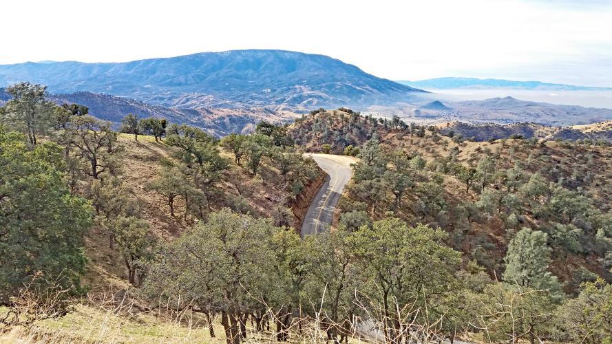 Lions Trail Bike Climb - PJAMM Cycling