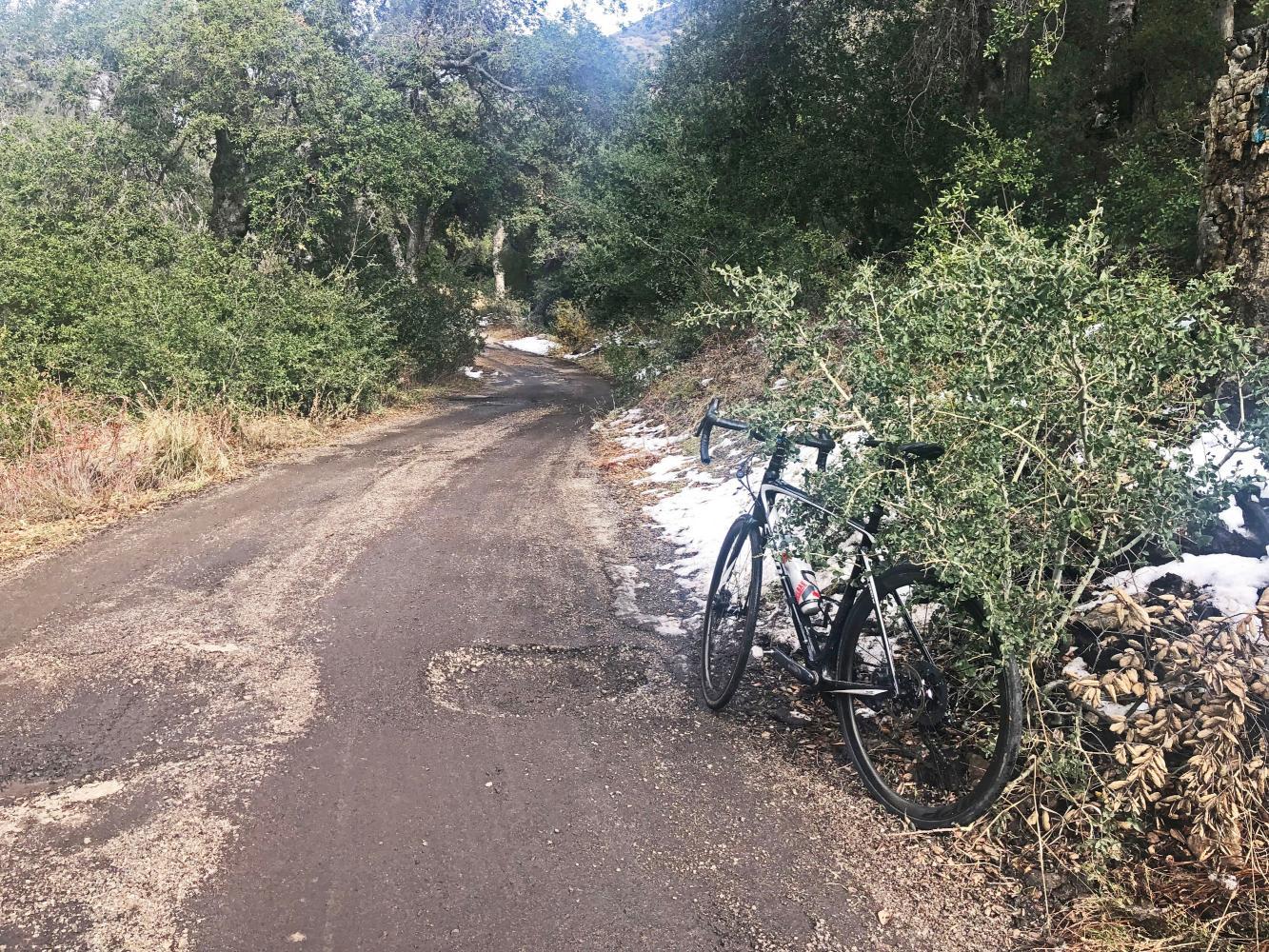 Pine Creek Road Bike Climb - PJAMM Cycling