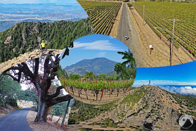 NOMA Tour - Mt. St. Helena - Western Mines Bike Climb - PJAMM Cycling