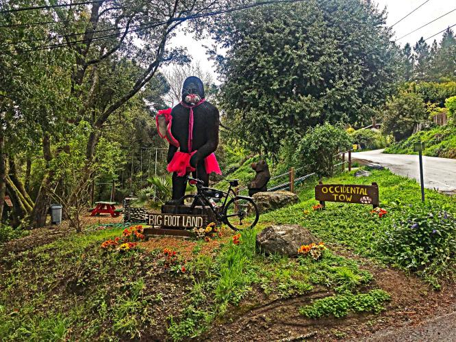 Morelli Lane Bike Climb - PJAMM Cycling