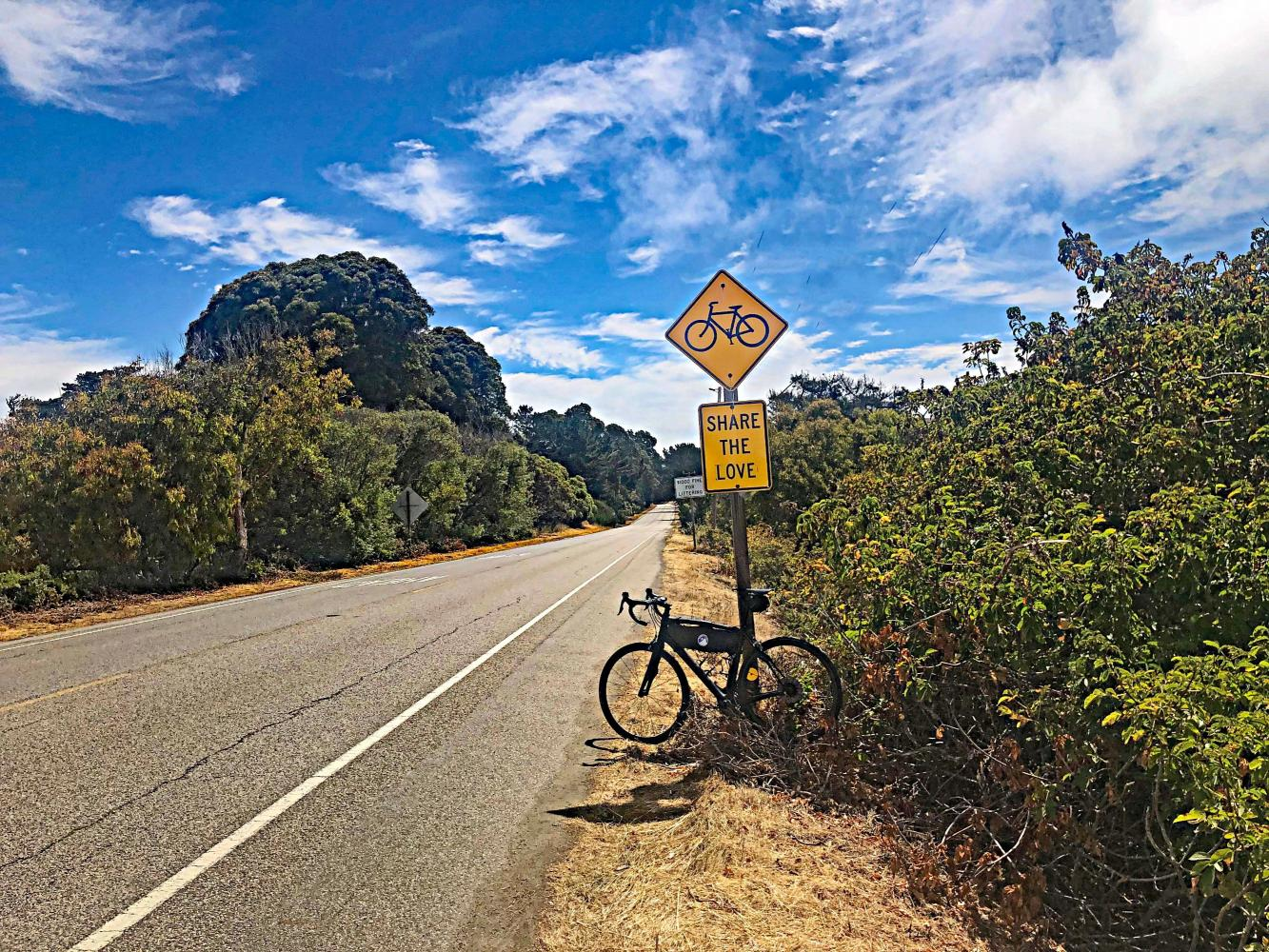 Old La Honda Road Bike Climb - PJAMM Cycling