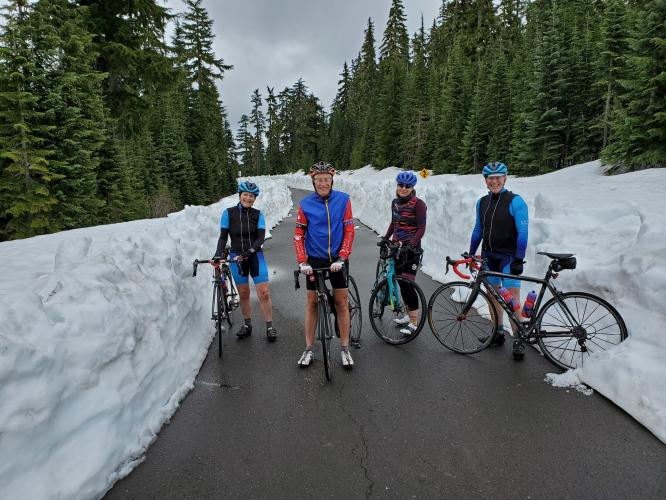 Mt. St. Helens - Windy Ridge Bike Climb - PJAMM Cycling