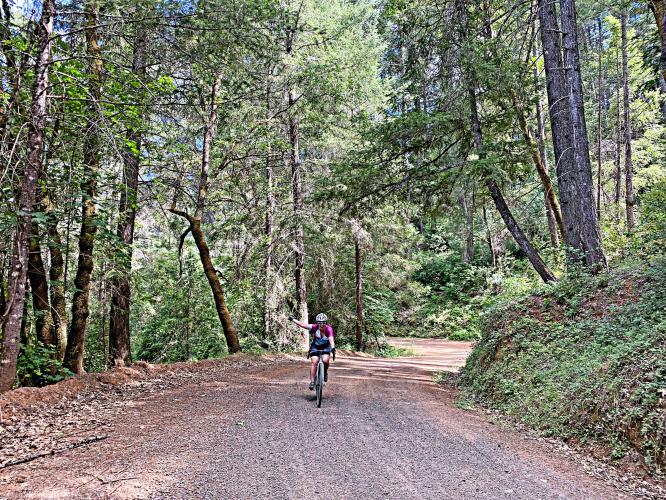 Shirttail Canyon Bike Climb - PJAMM Cycling