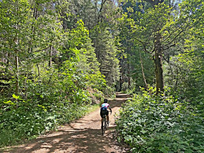 Old Yosemite Road Bike Climb - PJAMM Cycling
