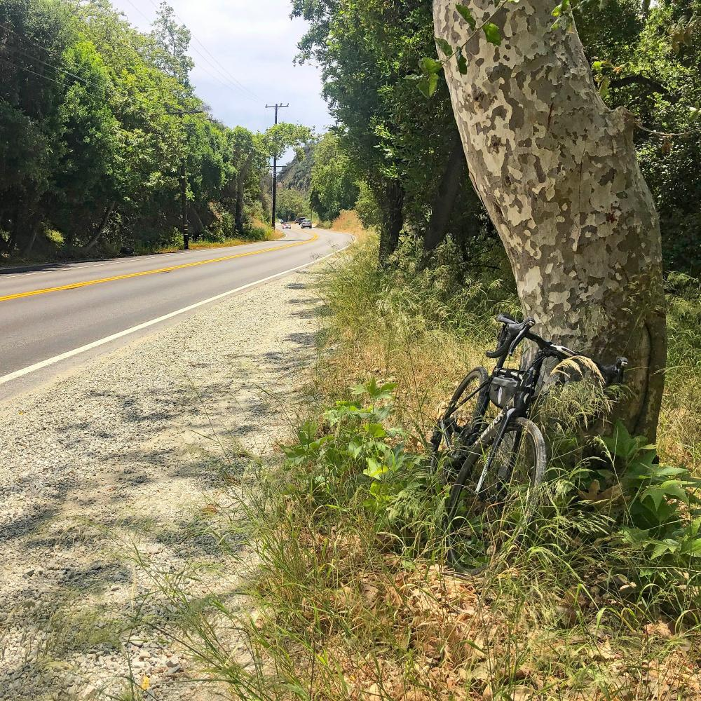 Topanga & Old Topanga Canyon Roads Bike Climb - PJAMM Cycling