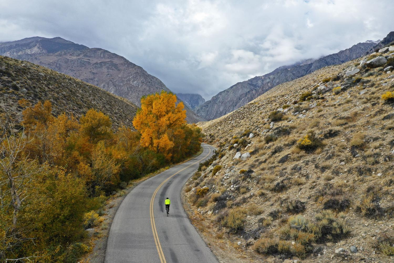 Pine Creek Bike Climb - PJAMM Cycling