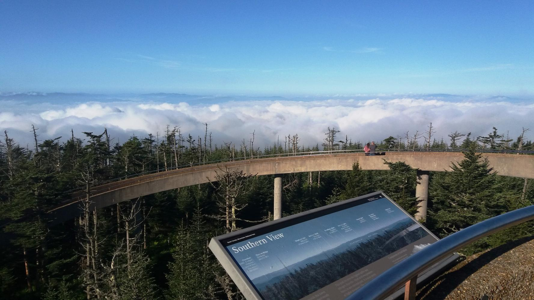 Clingmans Dome Bike Climb - PJAMM Cycling
