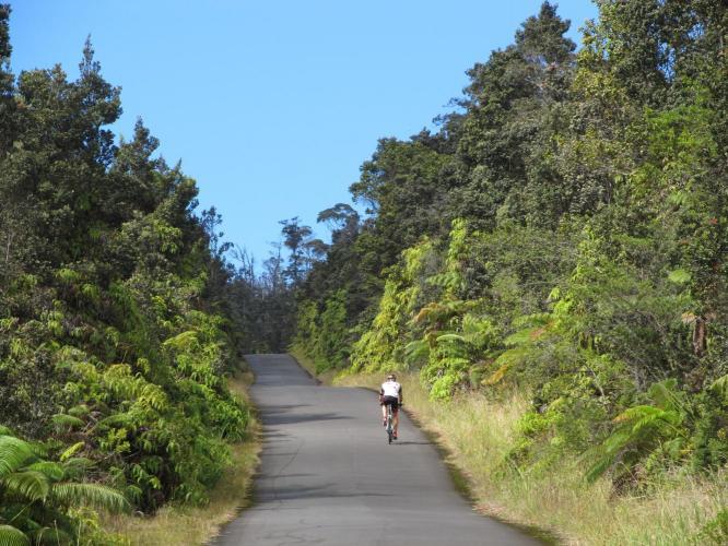 Stainback Road Bike Climb - PJAMM Cycling