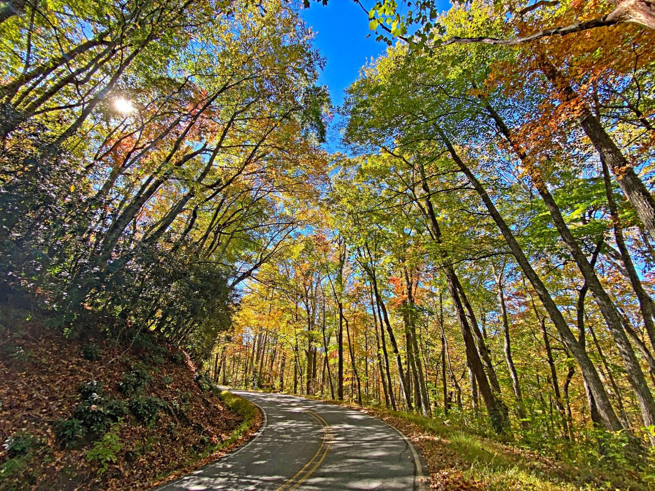 Blue Ridge Parkway - Route 151 to Mount Pisgah Bike Climb - PJAMM Cycling