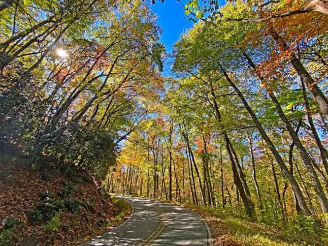 Blue Ridge Parkway - Route 151 to Mount Pisgah Bike Climb - PJAMM Cycling