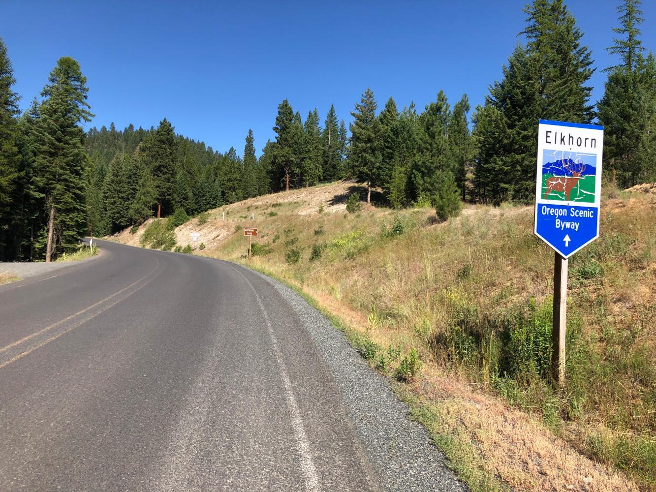 Elkhorn Summit Bike Climb - PJAMM Cycling