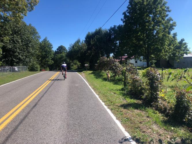 Daus Mountain Road Bike Climb - PJAMM Cycling