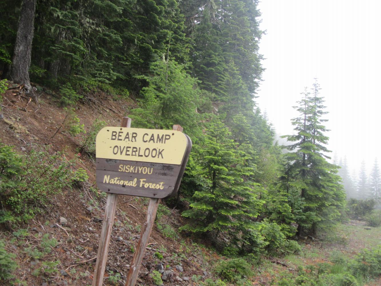 Bear Camp East Bike Climb - PJAMM Cycling
