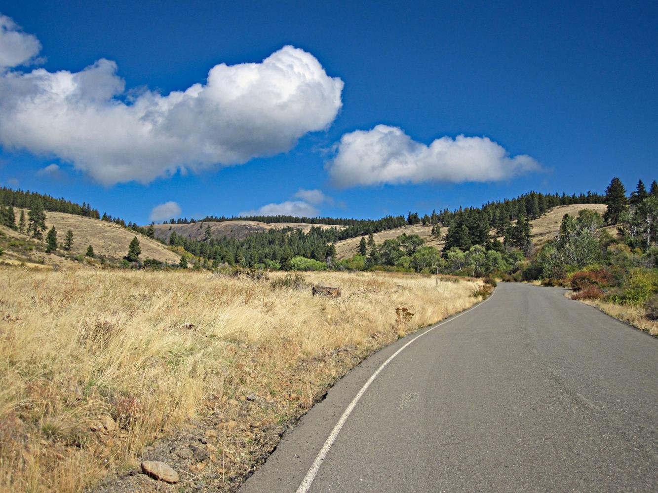 Lion Rock Bike Climb - PJAMM Cycling