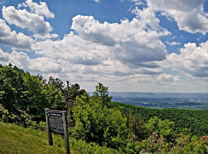 Blue Ridge Parkway - Great Valley Overlook Bike Climb - PJAMM Cycling