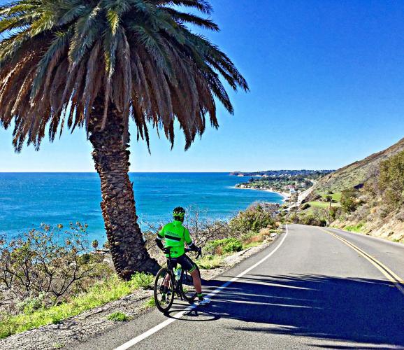 Corral Canyon Road Bike Climb - PJAMM Cycling