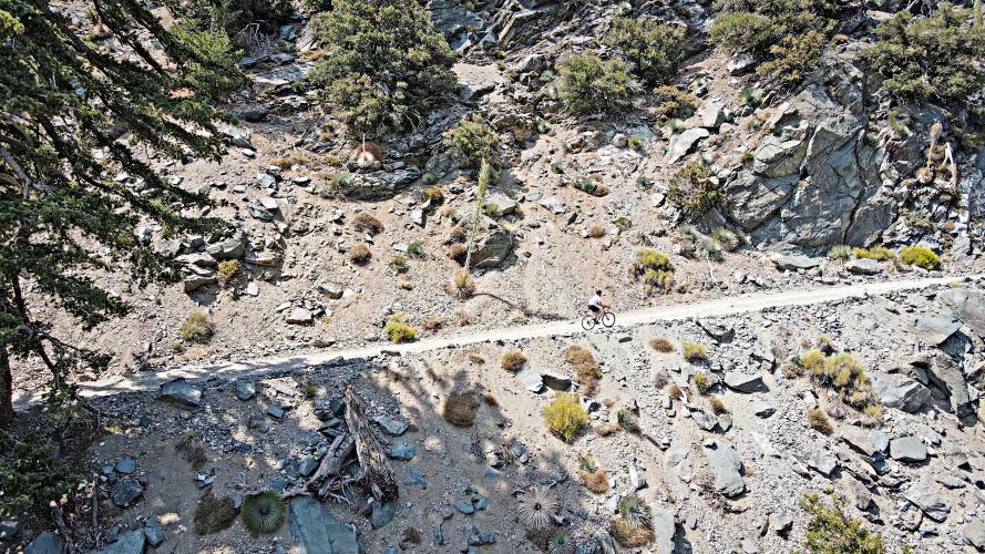 Mt. Baldy (to the Notch) Bike Climb - PJAMM Cycling