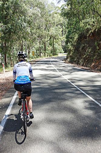 Mt. Stanley Bike Climb - PJAMM Cycling