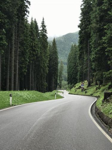 Passo Rolle -Predazzo  Bike Climb - PJAMM Cycling
