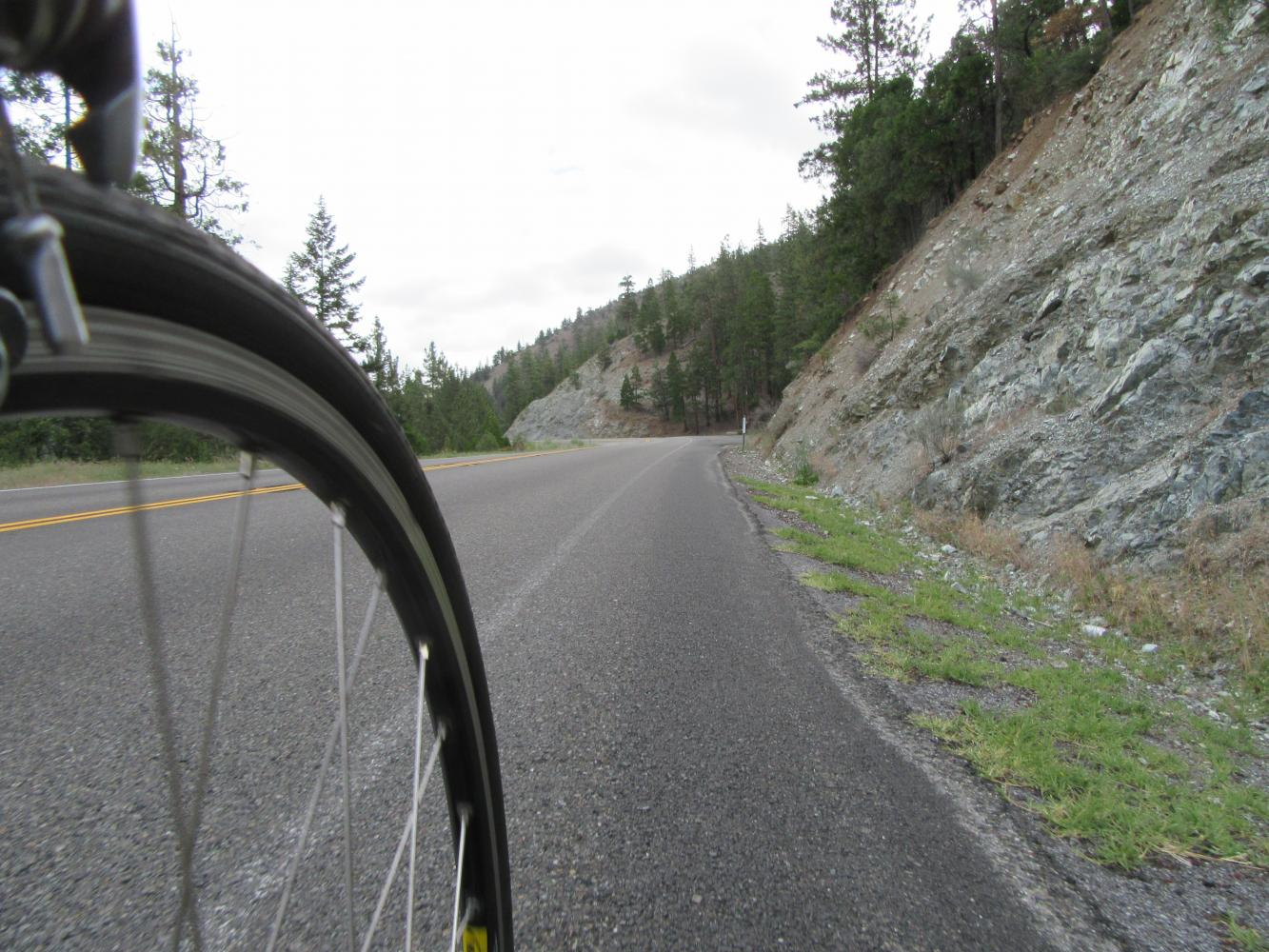 Forest Mt. Summit West Bike Climb - PJAMM Cycling