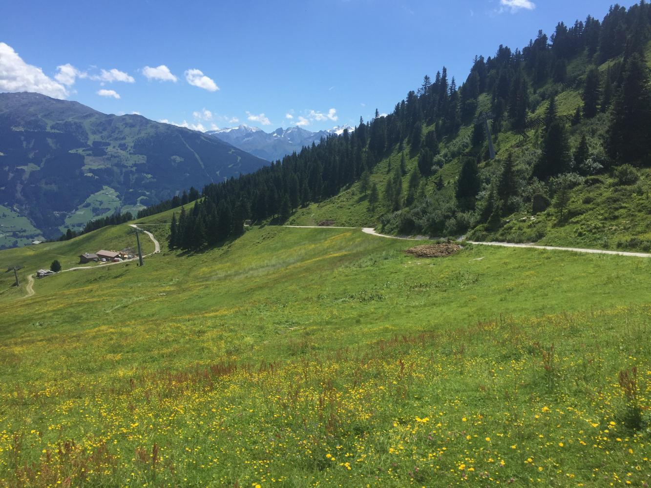 Aschau - Murmelland Bike Climb - PJAMM Cycling