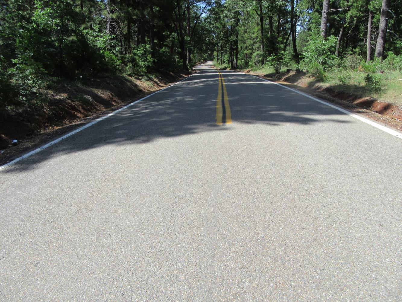 Wilson Hill Climb Bike Climb - PJAMM Cycling