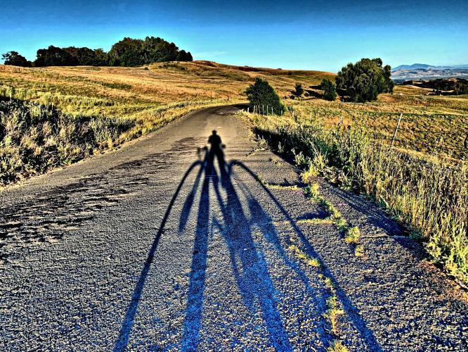 Patrick Road Bike Climb - PJAMM Cycling