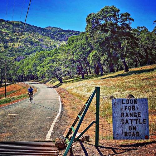 Twin Sisters Bike Climb - PJAMM Cycling