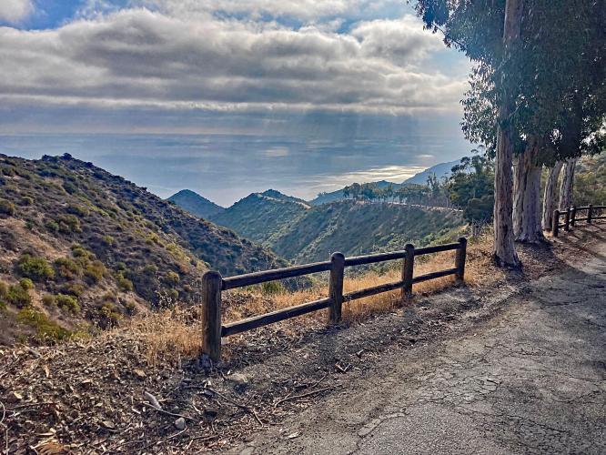 Catalina Island Conservancy  Bike Climb - PJAMM Cycling
