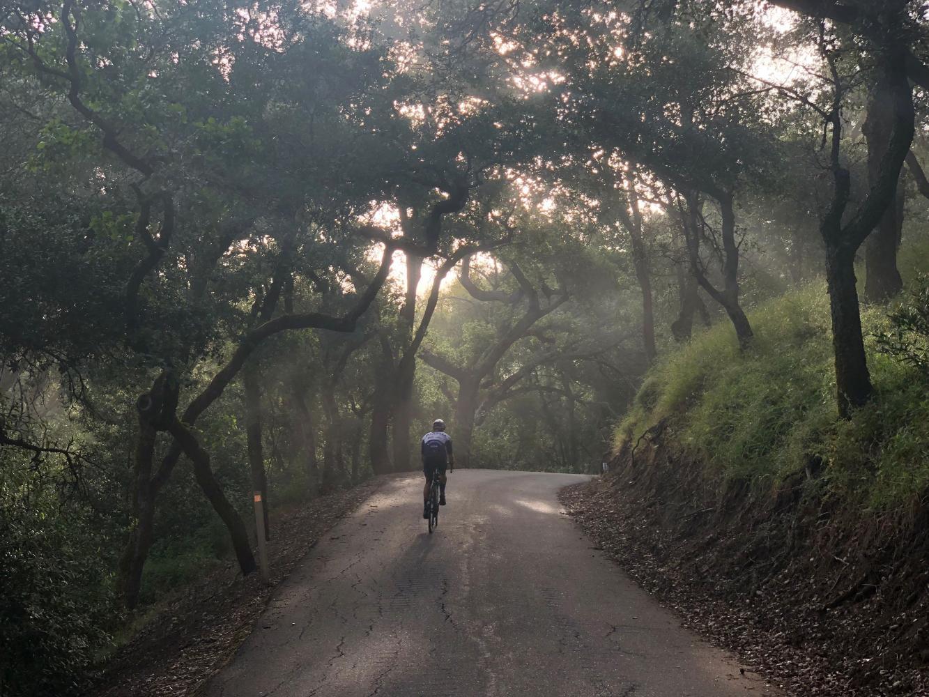 Welch Creek Road Bike Climb - PJAMM Cycling