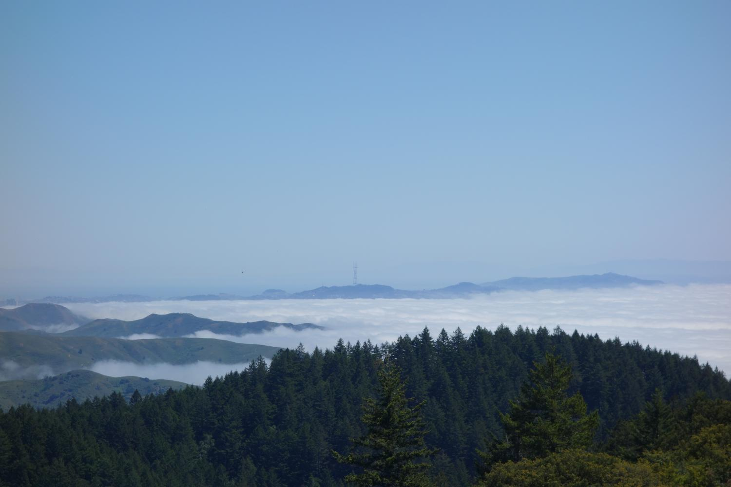 Mt. Tam via Fairfax-Bolinas Road Bike Climb - PJAMM Cycling