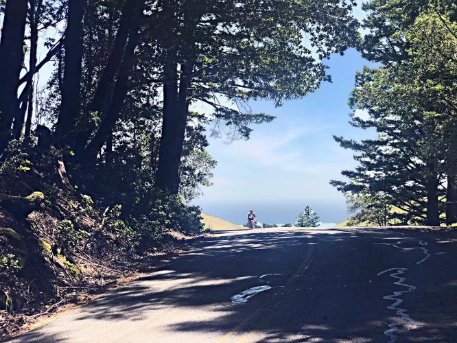 Mt. Tam via Muir Woods Bike Climb - PJAMM Cycling