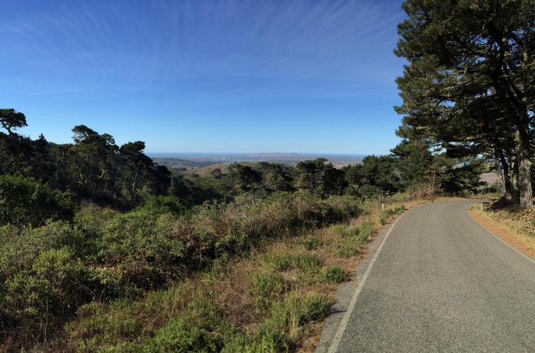 Mt. Vision Bike Climb - PJAMM Cycling