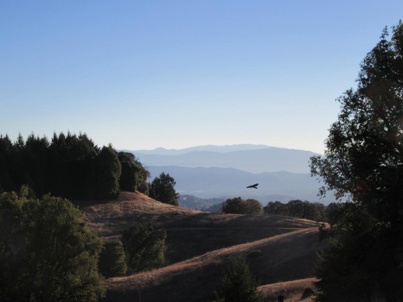 Orr Springs Road West Bike Climb - PJAMM Cycling