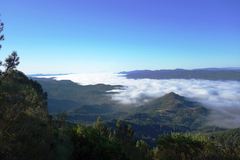 Mt. St. Helena Bike Climb - PJAMM Cycling