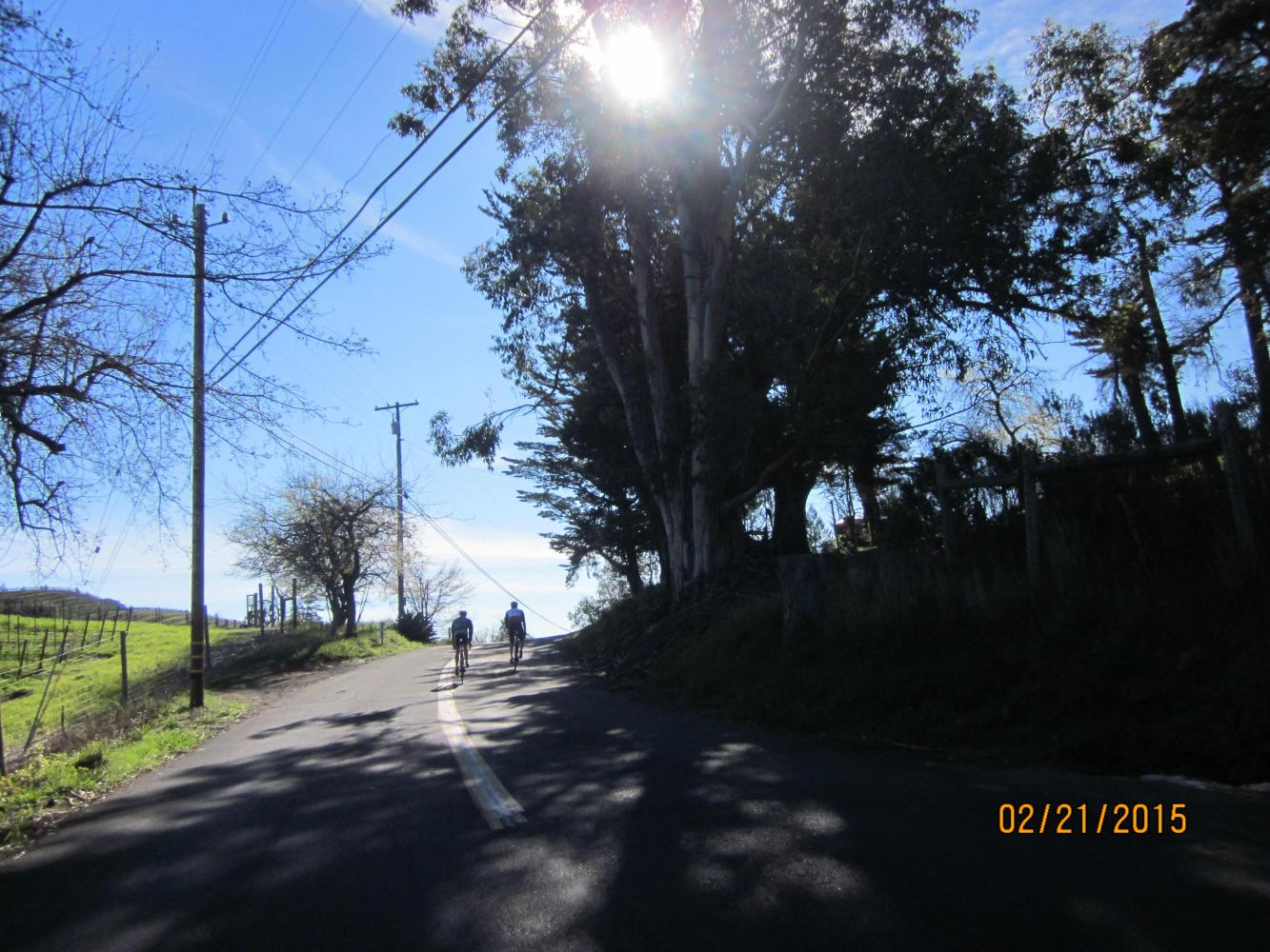 Mt. Veeder North  Bike Climb - PJAMM Cycling