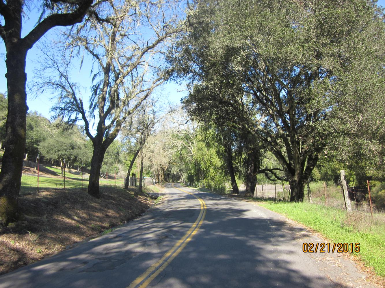 Mt. Veeder South Bike Climb - PJAMM Cycling