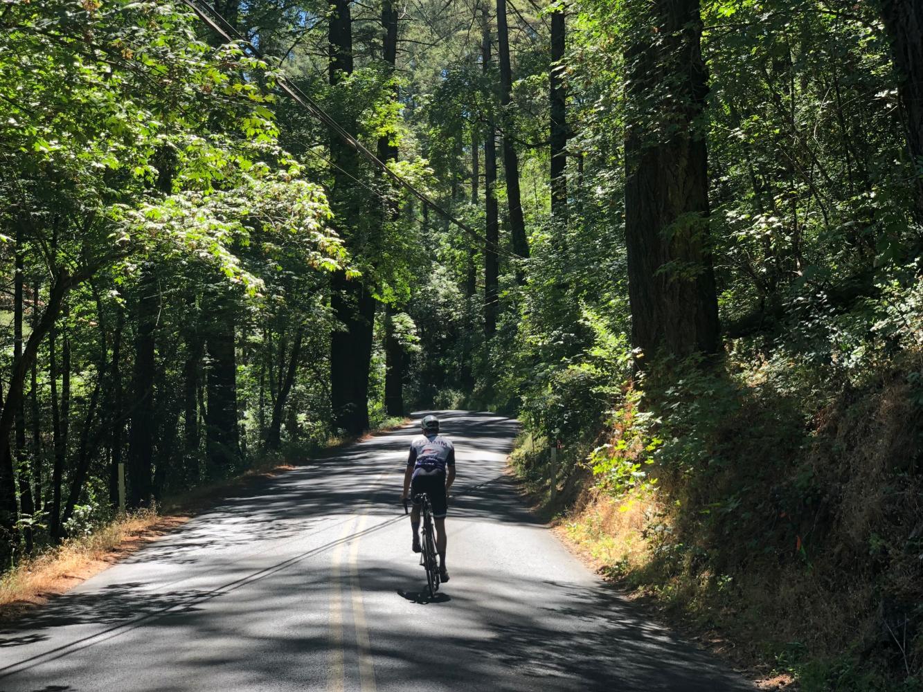 Old Howell Mountain Road Bike Climb - PJAMM Cycling