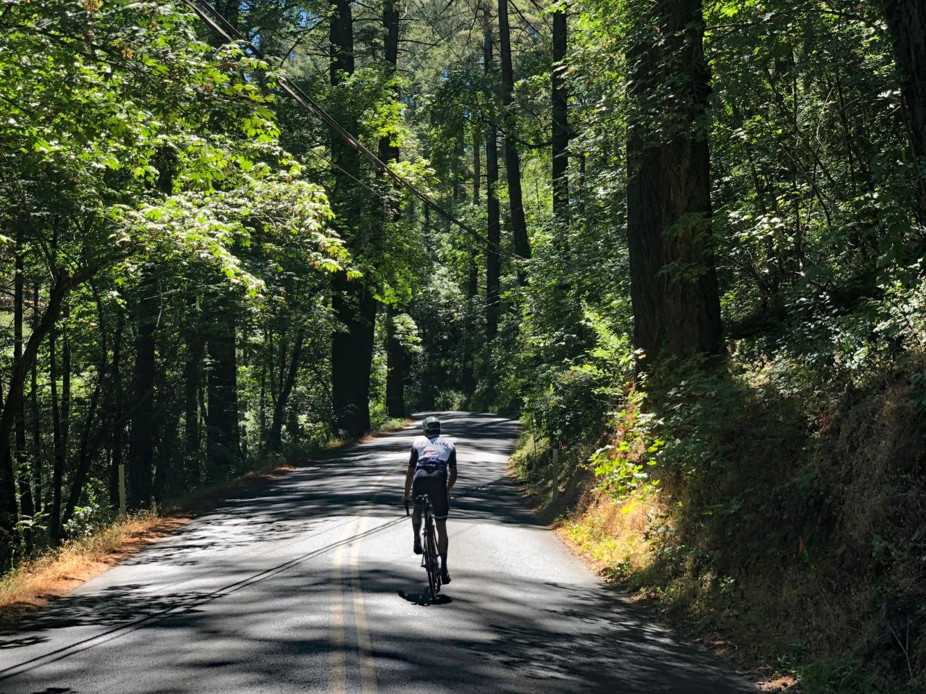 Old Howell Mountain Road Bike Climb - PJAMM Cycling
