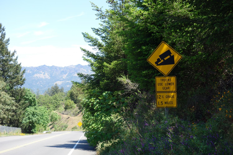Petrified Forest Road Bike Climb - PJAMM Cycling