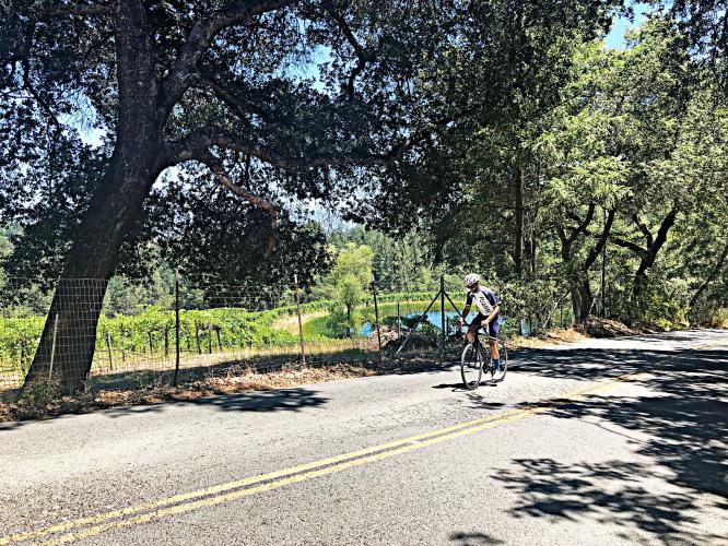 Spring Mountain Road Bike Climb - PJAMM Cycling