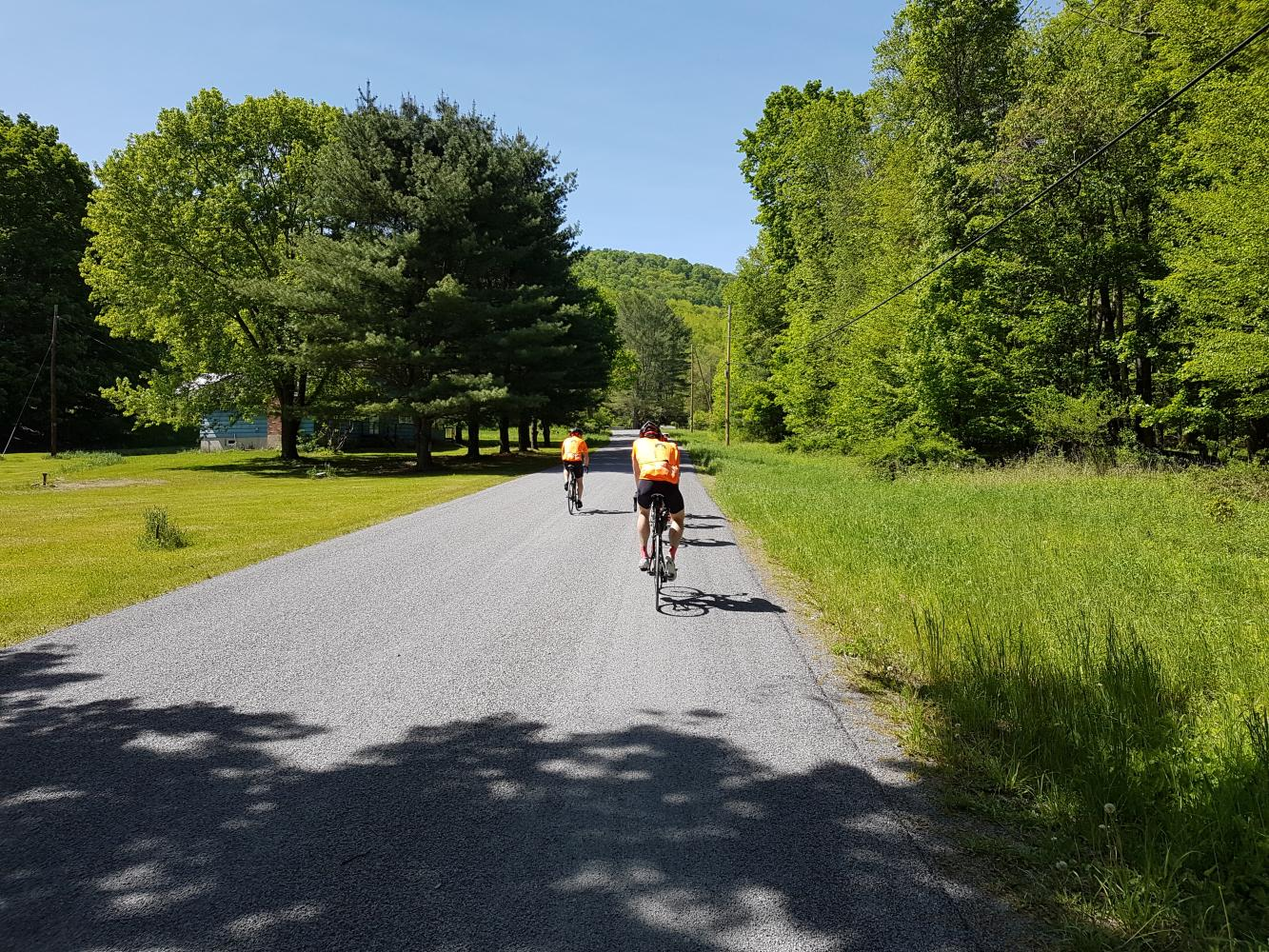 Sugarloaf Road Bike Climb - PJAMM Cycling
